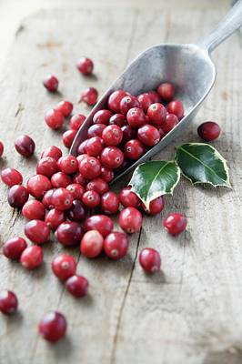 Cranberries Print by Gustoimages