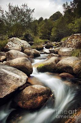 Fluid Photograph - Creek by Carlos Caetano