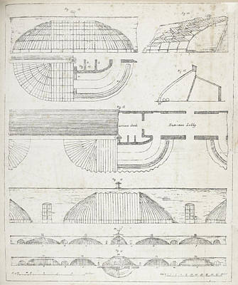 Cross Sections Of Greenhouses Art Print by British Library
