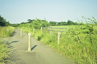 Agricultural Industry Wall Art - Photograph - Cycle Path by Tom Gowanlock
