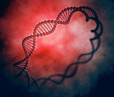Dna Strand Molecular Model Art Print by Andrzej Wojcicki