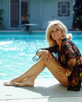 Dorothy Photograph - Dorothy Malone by Silver Screen