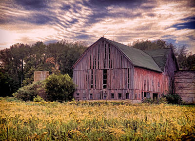 Photograph - Down On The Farm  by John Crothers