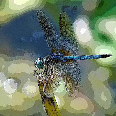 Door Locks And Handles - Retro Dragonfly Elegance by Charles Feagans