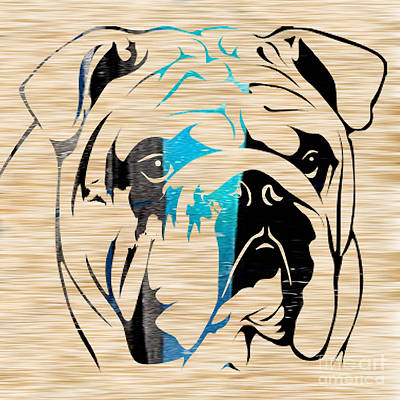 English Bull Dog Mixed Media - English Bulldog by Marvin Blaine