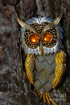 Eye Photograph - Faux Owl With Golden Eyes by Amy Cicconi