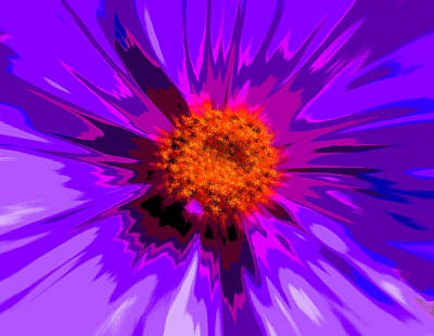 Royalty-Free and Rights-Managed Images - Flower Explosion Colour by David French