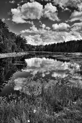 Fly Pond In The Adirondacks Art Print by David Patterson