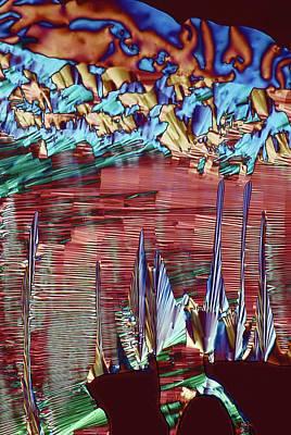 Crystalline Photograph - Folic Acid by Steve Lowry