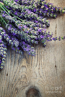 Fresh Lavender Art Print by Mythja  Photography