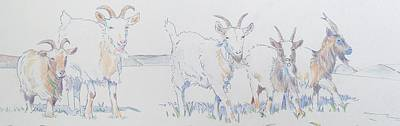 Goat Drawing - Goat Drawing by Mike Jory