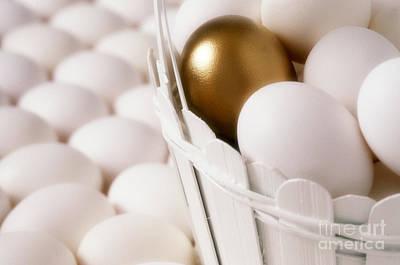 Golden Egg Art Print
