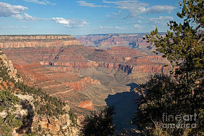 Photograph - Grandview Point Grand Canyon National Park by Fred Stearns