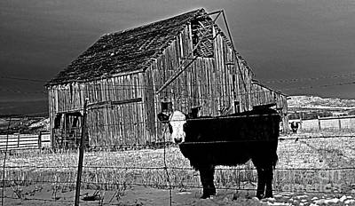 Buckaroo Photograph - Harney County Oregon by Michele AnneLouise Cohen