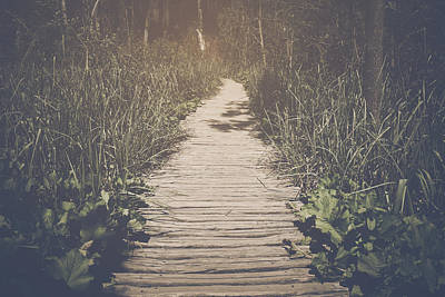 River Photograph - Hiking Trail With Sunlight With Vintage Instagram Film Effect by Brandon Bourdages