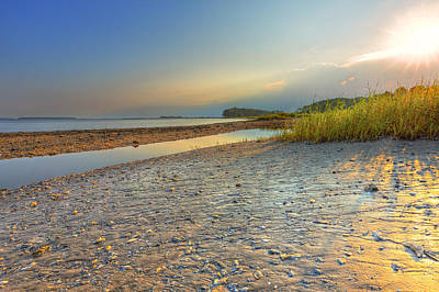 Photograph - Hilton Head Island by Peter Lakomy