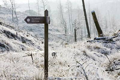 Winter Landscapes Photograph - Hoar Frost On Vegetation by Ashley Cooper