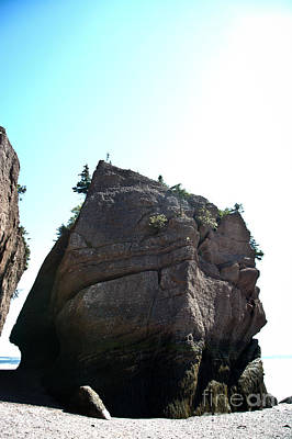Photograph - Hopewell Rocks by Cheryl Baxter
