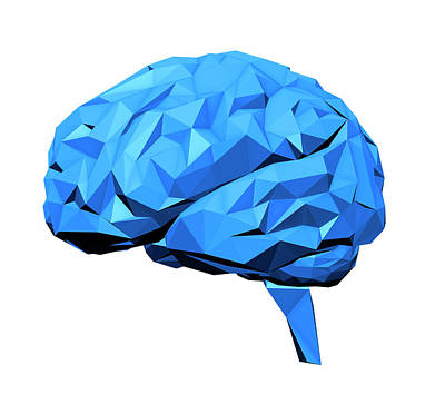 Human Brain Print by Andrzej Wojcicki