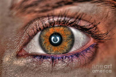 Human Eye Art Print by Guy Viner