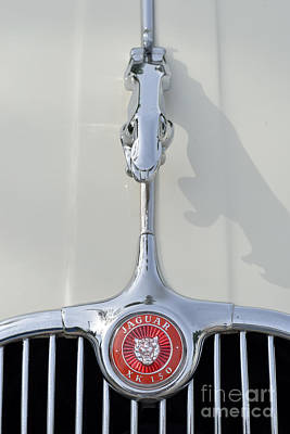 Logo Photograph - 1957 Jaguar Xk 150 by George Atsametakis