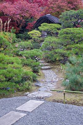 Fall Colors Photograph - Japan, Kyoto, Arashiyama, Sagano by Rob Tilley