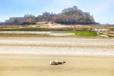 Jersey - Elizabeth Castle Art Print by Joana Kruse
