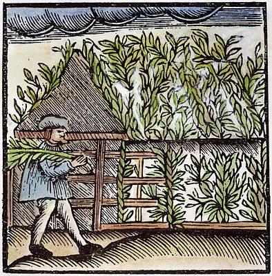 Jewish Holiday, 1663 Art Print by Granger