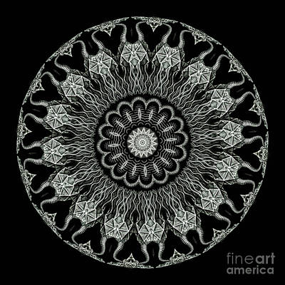 Kaleidoscope Ernst Haeckl Sea Life Series Black And White Set On Art Print by Amy Cicconi