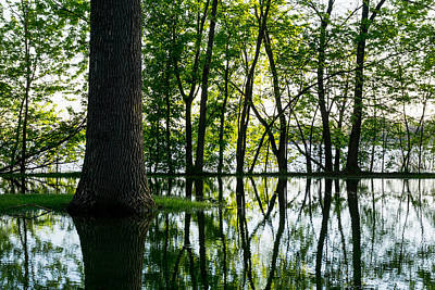 Floods Photograph - Lake Nokomis In A Wet Spring by Jim Hughes