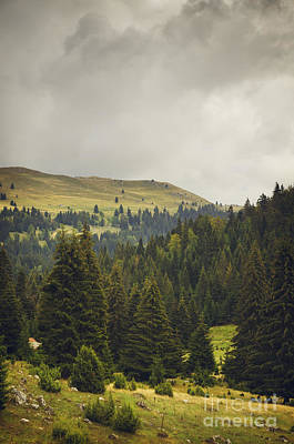 Landscapes Royalty-Free and Rights-Managed Images - Landscape in Autumn by Jelena Jovanovic
