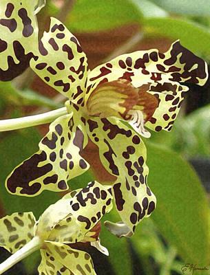 Painting - Leopard Orchids by Ellen Henneke
