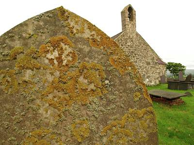 Crustose Photograph - Lichen On Gravestone In Unpolluted Air by Cordelia Molloy