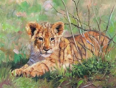 Lioness Wall Art - Painting - Lion Cub by David Stribbling