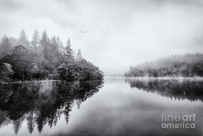 Reed Photograph - Loch Ard by John Farnan