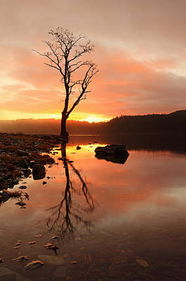 Photograph - Loch Ard Sunrise by Grant Glendinning