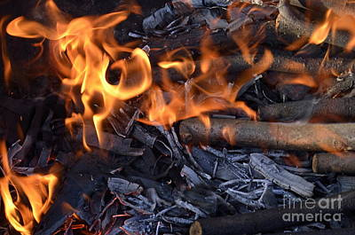 Photograph - Log Fire And Flames by Sami Sarkis