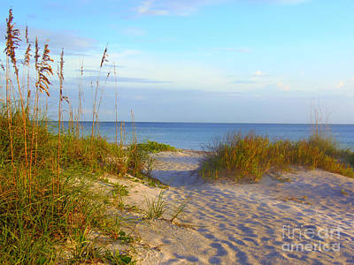 Photograph - Longboat Key Beach by Lou Ann Bagnall