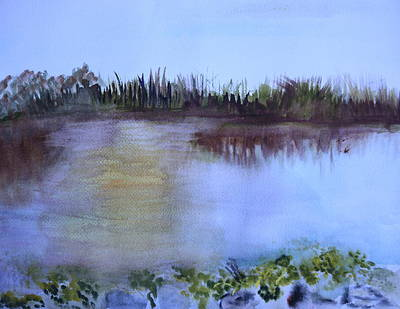 Painting - Loxahatchee Sunset by Donna Walsh