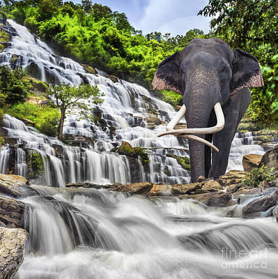 Mae Ya Waterfall Art Print by Anek Suwannaphoom