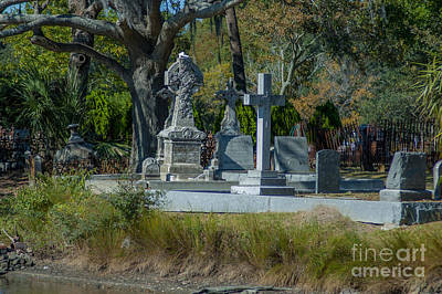 School Teaching - Magnolia Cemetery on the banks of the Cooper River by Dale Powell