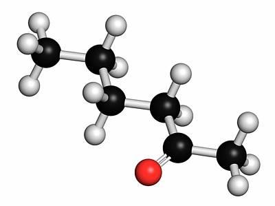 Polymer Photograph - Methyl Butyl Ketone Molecule by Molekuul