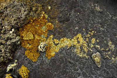 Glister Photograph - Mineral Texture by Pablo Romero