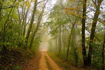 Photograph - Natchez Trace by Kenneth Murray