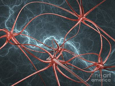 Photograph - Neural Network, Artwork by Laguna Design