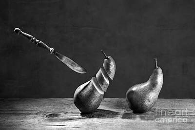 Still Life Royalty-Free and Rights-Managed Images - No Escape by Nailia Schwarz