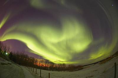 Northern Lights, Edmonton, Alberta Art Print by Carson Ganci