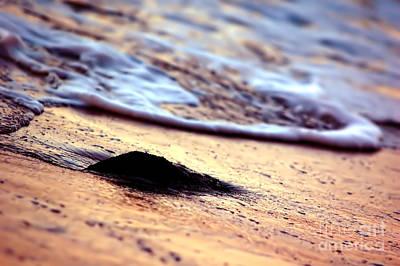 Ocean In Sunshine Art Print