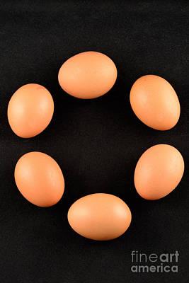 Biological Photograph - Organic Eggs by George Atsametakis