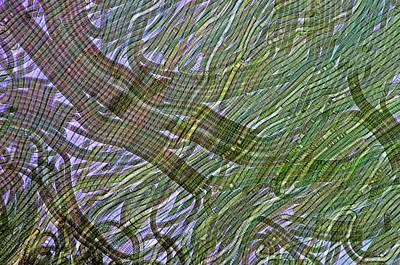 Phytoplankton Photograph - Oscillatoria Cyanobacteria by Marek Mis